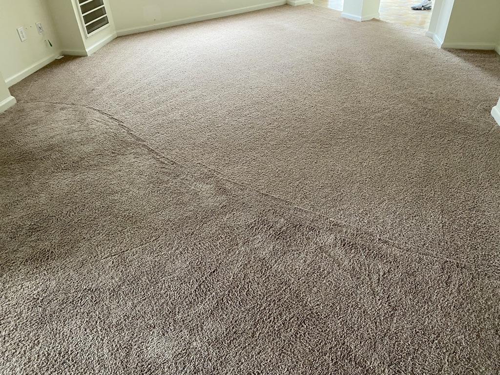 Carpet cleaning job in Virginia Beach Va